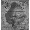 Thronum Sataniis deathevangelium #4 magazine