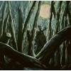 """HARROW """"Fallow fields"""" CD"""