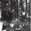 "SATANIC WARMASTER ""Carelian Satanist Madness"" DOUBLE CD"