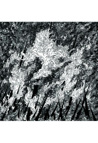 Vilkacis / Turia -split LP