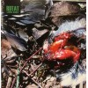 "ROTAT ""Carnal Beauty"" CD"